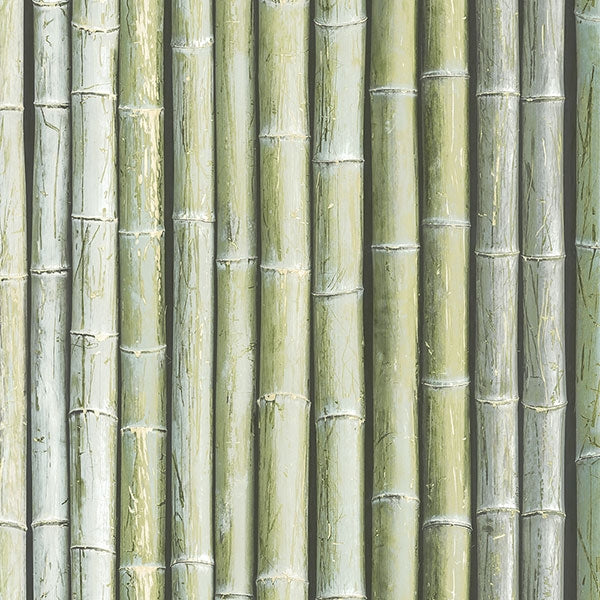 Bamboo Realistic Stalks in Green Solid Vinyl on Paste the Wall Wallpaper - all4wallswall-paper