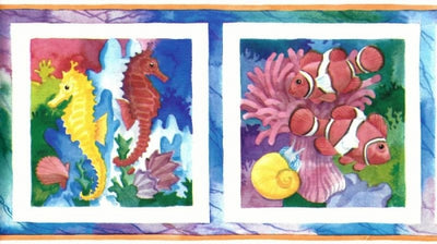 Brilliant Fish in White Frames Wallpaper Border - all4wallswall-paper