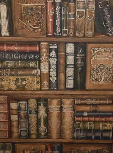 Norwall Library Bookcase Wallpaper - all4wallswall-paper