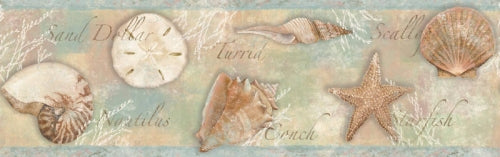 Titled Shells on Sea Green on Easy Walls Wallpaper Border - all4wallswall-paper