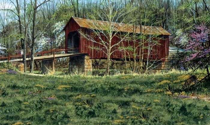 Country Covered Bridge Full Wall Mural 15' x 9' - all4wallswall-paper