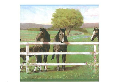 Horses Grazing at the Fence Sure Strip Wallpaper Border - all4wallswall-paper