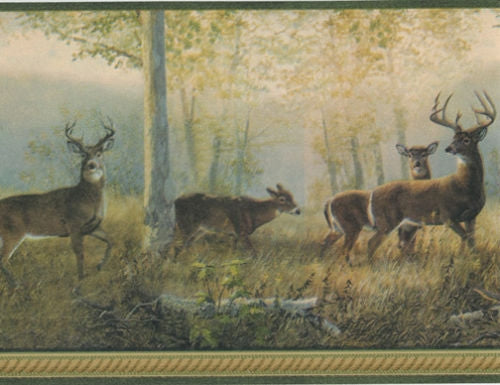 Northwoods Forest Deer with Green Edge Wallpaper Border - all4wallswall-paper