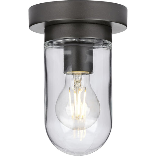 Signal Collection One-Light Flush Mount