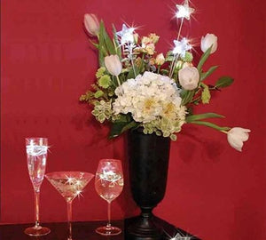 Put a party in your glass with waterproof Star Lites. Come 12 to a box for $48.00.  Call for BULK PRICING.
