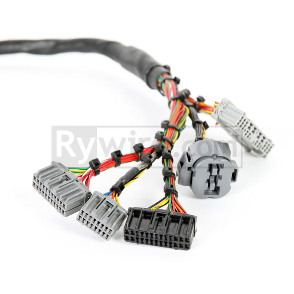 Rywire OBD2 Mil-Spec D & B-Series Tucked Engine harness