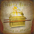 Joshua James - Beauty In Motion
