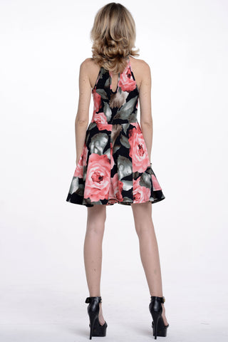 (alq) Floral print fit and flare short dress