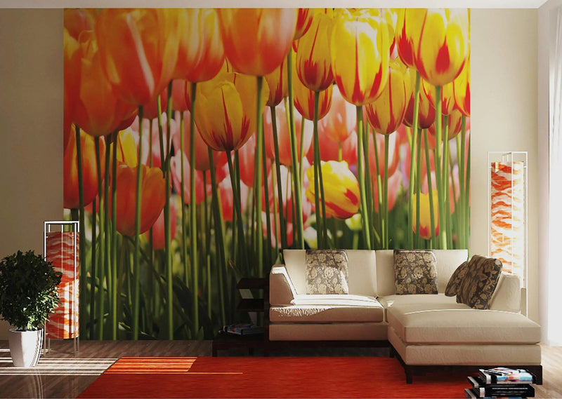 AG DESIGN Photo Wall Mural, Giant Tulip Wall Poster, 7 x 100 Inches - Parts - FTS 005, Multi-Colour, 360 x 254 cm