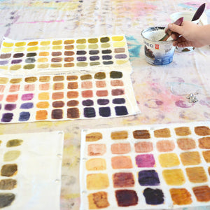 DAY WORKSHOP: PRINTING WITH NATURAL DYES | 13 APR