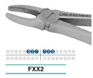 Adult Extraction Forcep, FXX2 - DentalSupplyHouston.com