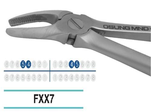 Adult Extraction Forcep, FXX7 - DentalSupplyHouston.com