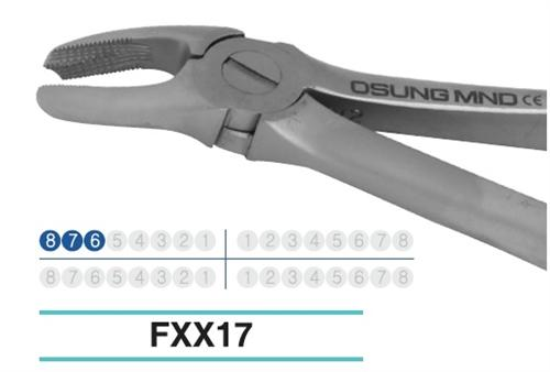 Adult Extraction Forcep, FXX17 - DentalSupplyHouston.com