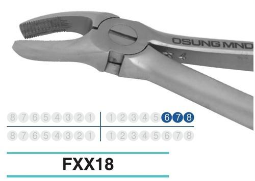Adult Extraction Forcep, FXX18 - DentalSupplyHouston.com