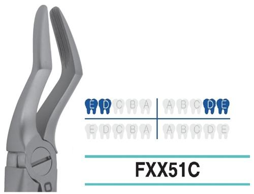 Extraction Forcep, Child/Pedo, FXX51C - DentalSupplyHouston.com