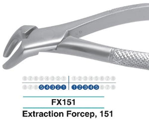 Dental Extraction Forcep LOWER TERRIORS ANTERIOR, FX151 - DentalSupplyHouston.com