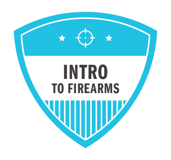 Arlington, TX .... Introduction To Firearms