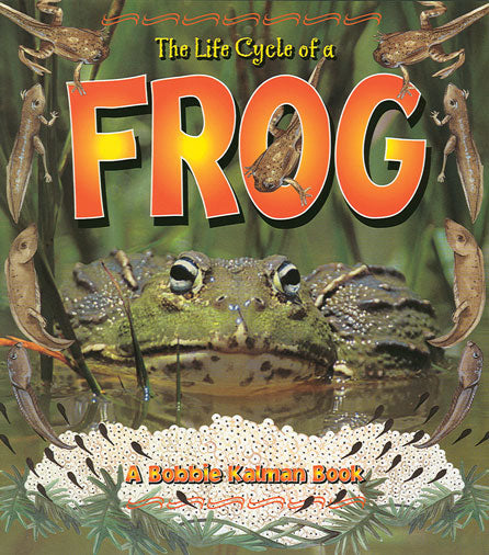 Life Cycle of a Frog Paperback Book