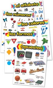 Beginning Concepts Charts Set of 5 in Spanish
