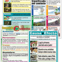 Reading Comprehension Laminated Chart Set (Spanish)