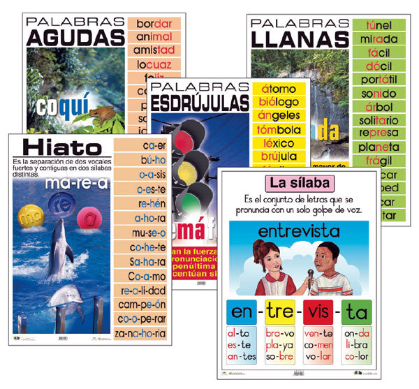 Syllables Spanish Laminated Chart Set