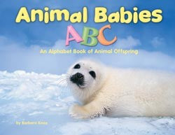 Animal Babies ABC Library Bound Book
