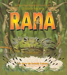 Life Cycle of a Frog Paperback Book Spanish (Rana)
