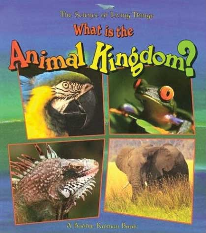 Life Processes Series: What is the Animal Kingdom?