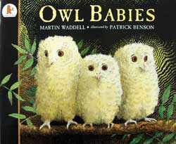 Owl Babies English Hardcover Book