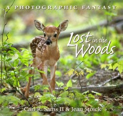 Lost in the Woods Hardcover