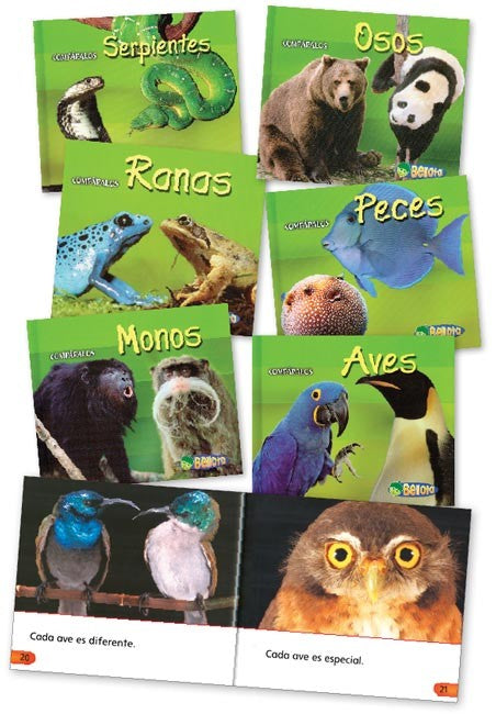 Creature Comparisons Spanish Book Set