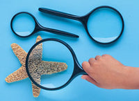 Magnifying Glass 3 inch