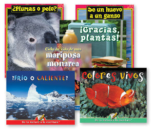 Spanish Big Book Set B