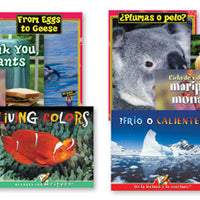 Spanish & English Big Book Set B