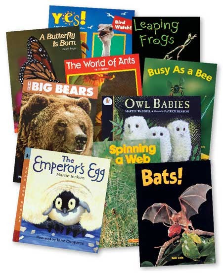 Animals Big Books Set of 10