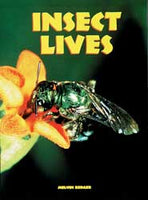 Insect Lives Student Book Set