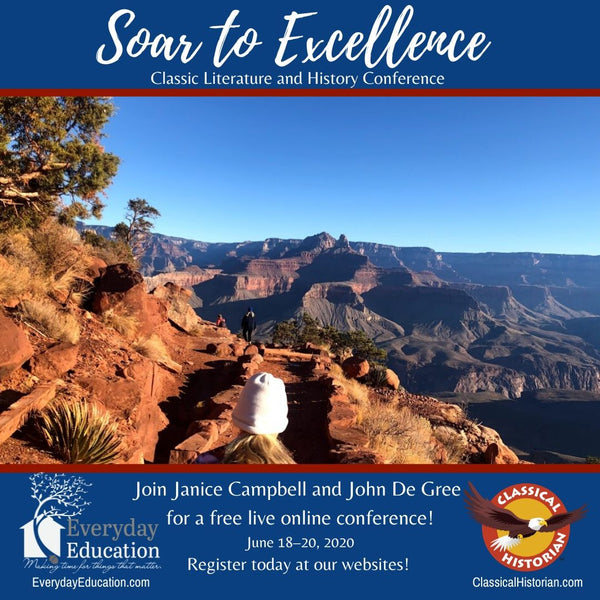 Soar to Excellence Online Conference