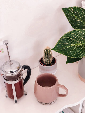 Cafeteria and cup of cacao with plants.