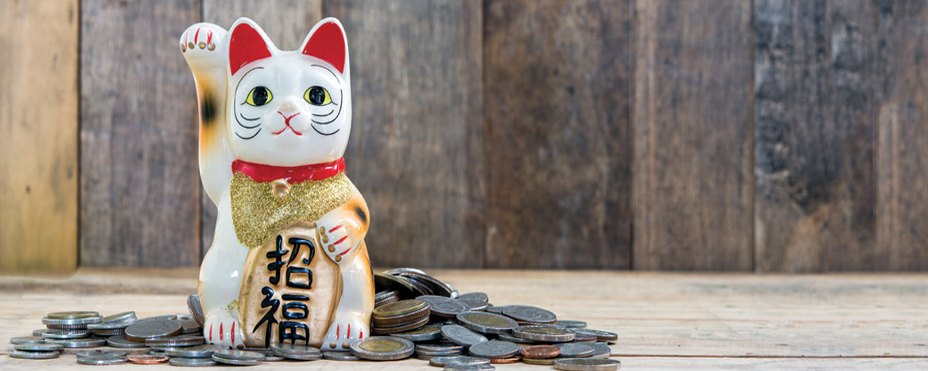 Maneki neko : The lucky cat