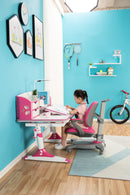 Smiley's Ergonomic Multi Function Adjustable Kids Study Desk & Hutch Model E