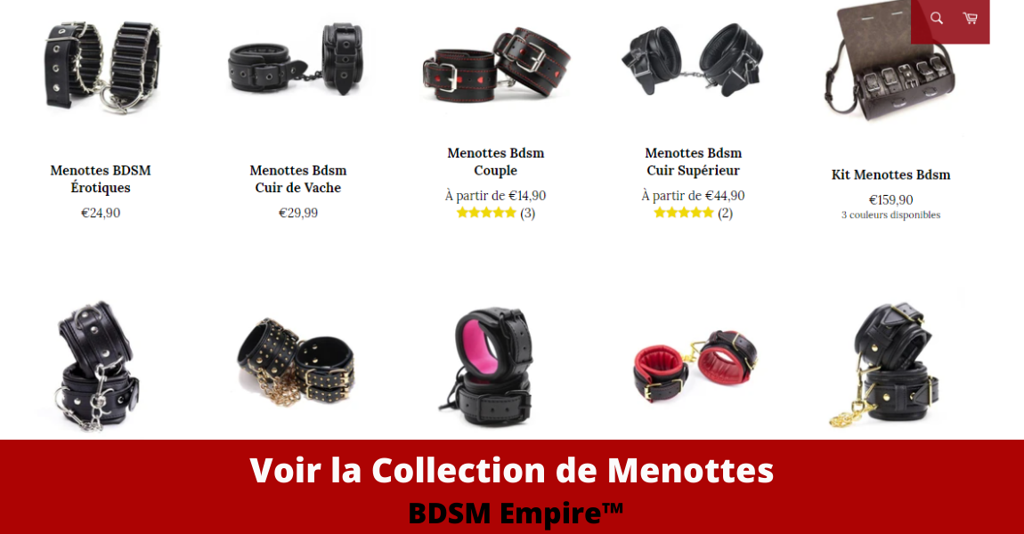 collection de menottes