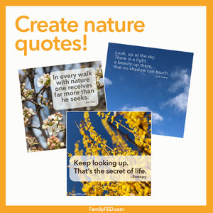 Photograph Nature and Pair It with a Calming Quote—a Sunday Service Idea for Earth Week