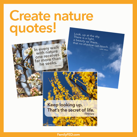Create nature memes for a simple service activity