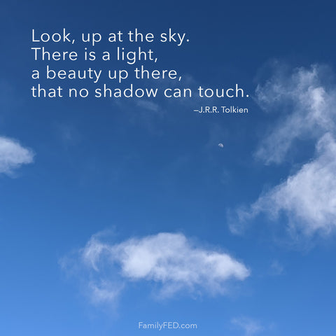 Look, up at the sky. There is a light, a beauty up there, that no shadow can touch. —J.R.R. Tolkien