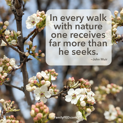 In every walk with nature one receives far more than he seeks. —John Muir