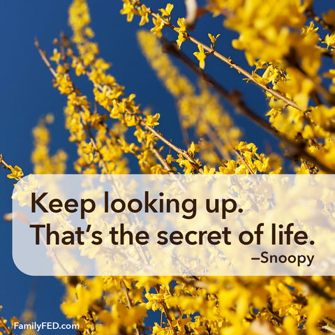 Keep looking up. That's the secret of life. —Snoopy