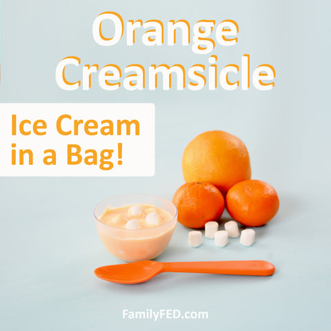 How to Make Orange-Creamsicle Ice Cream in a Bag