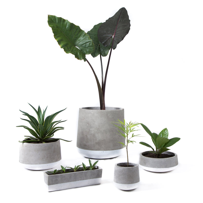 Concrete Planter Small White Band