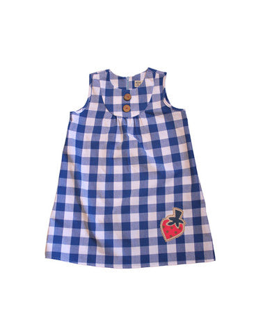 BLUE GINGHAM dress.