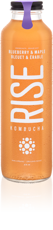 Rise - Kombucha, Blueberry & Maple